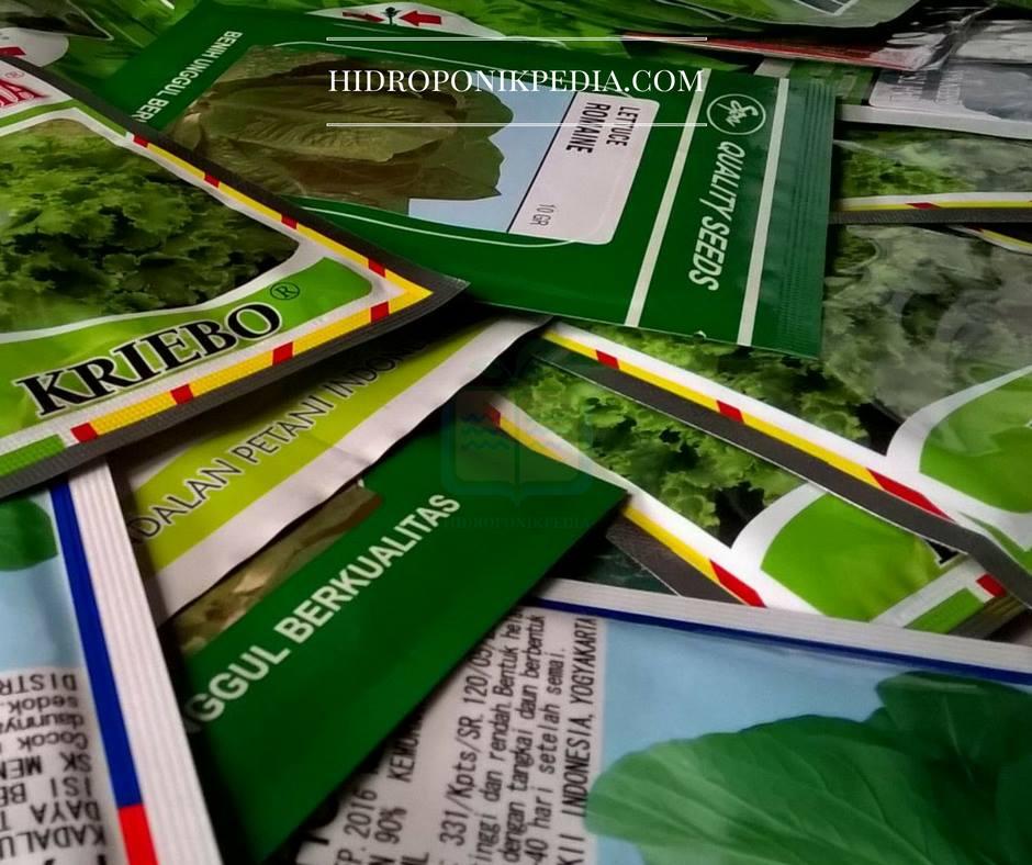 benih-sayuran-hidroponik