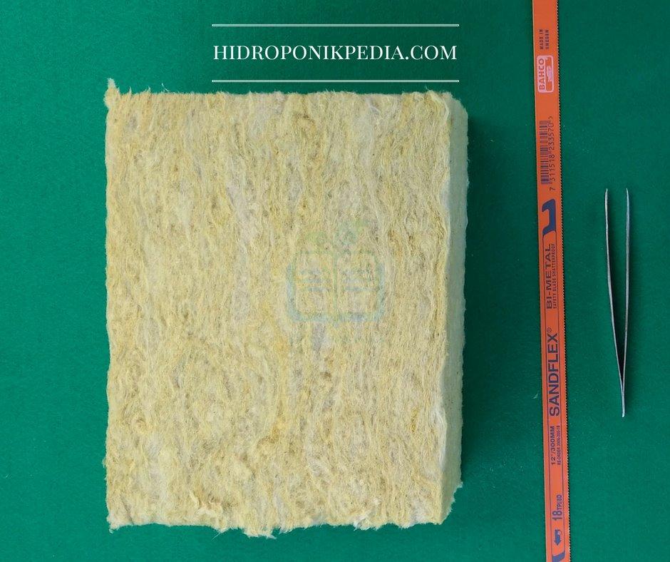 cara-menanam-selada-hidroponik-01
