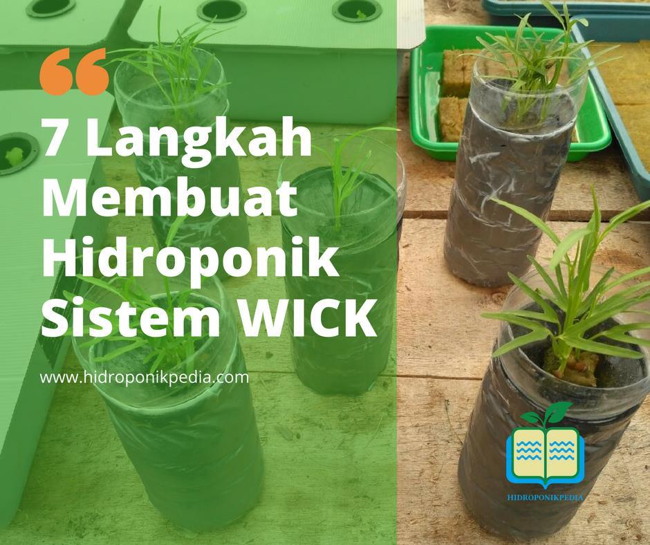 step-by-step-cara-membuat-hidroponik-wick-01