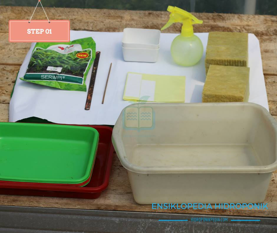 step-by-step-cara-menanam-kangkung-hidroponik-01