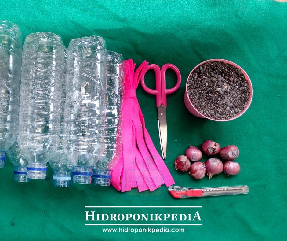 cara-menanam-bawang-merah-hidroponik-02