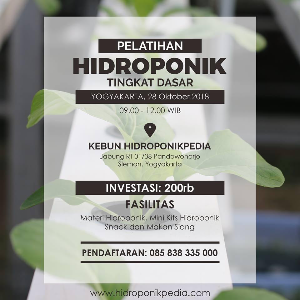 Pelatihan Hidroponik untuk Pemula (28 Oktober 2018)