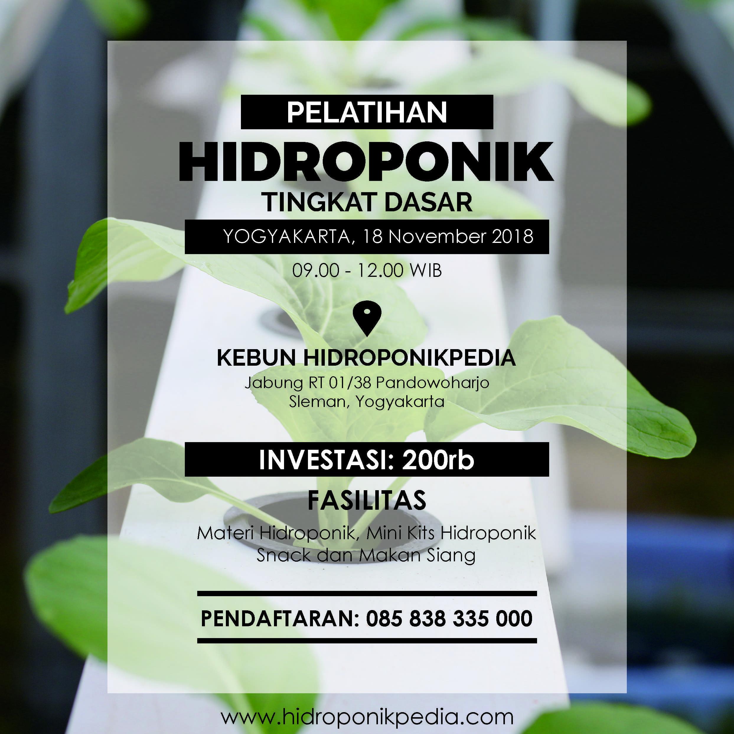 Pelatihan Hidroponik untuk Pemula (10 Februari 2019)