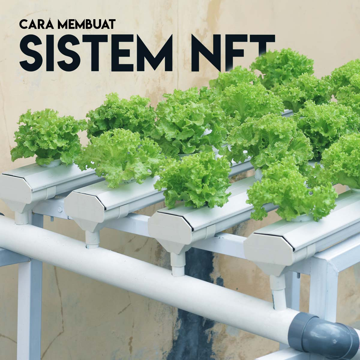 Video Tutorial Membuat Sistem NFT Hidroponik